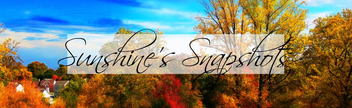 Sunshine's Snapshots